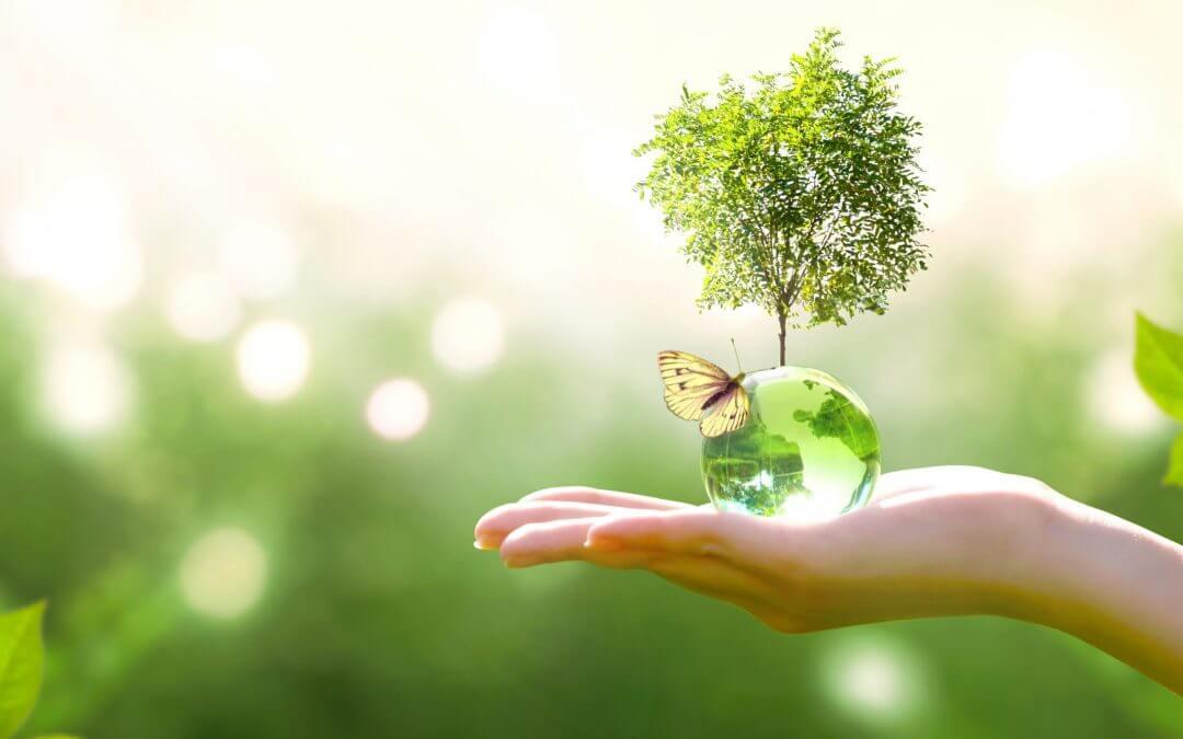 Tips Duurzame Dienst